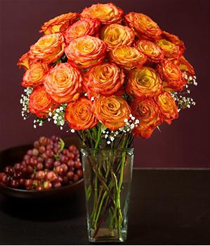 Flowers 02.01.09