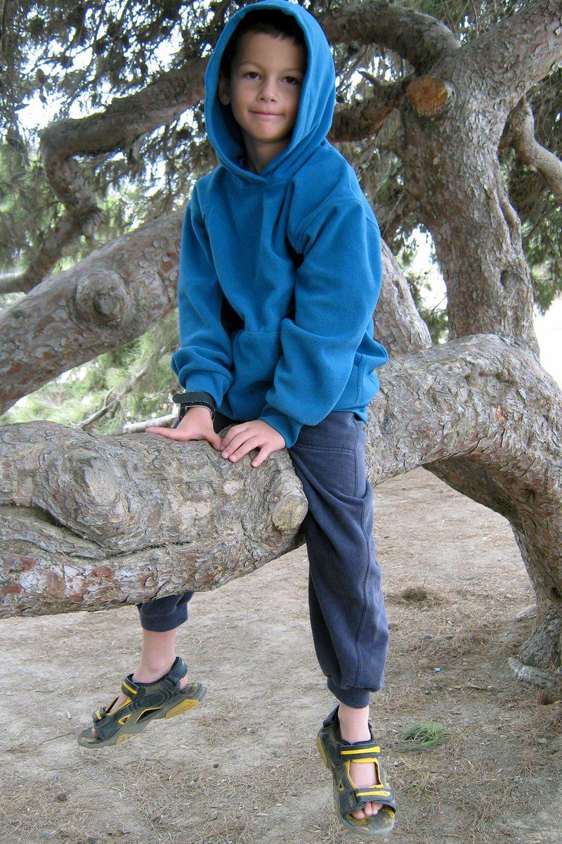 Seth tree 10.27.09