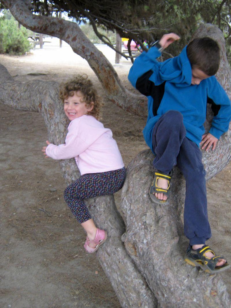 Tree huggers 10.27.09