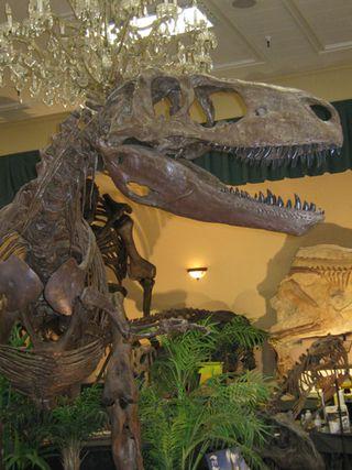 Tucson T-Rex