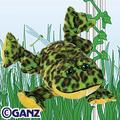 Bull_frog_123107