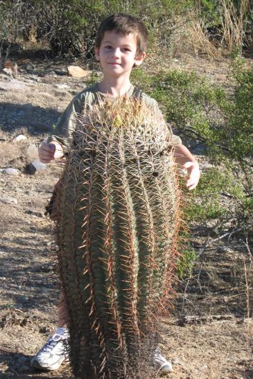 Cactus_seth_091608